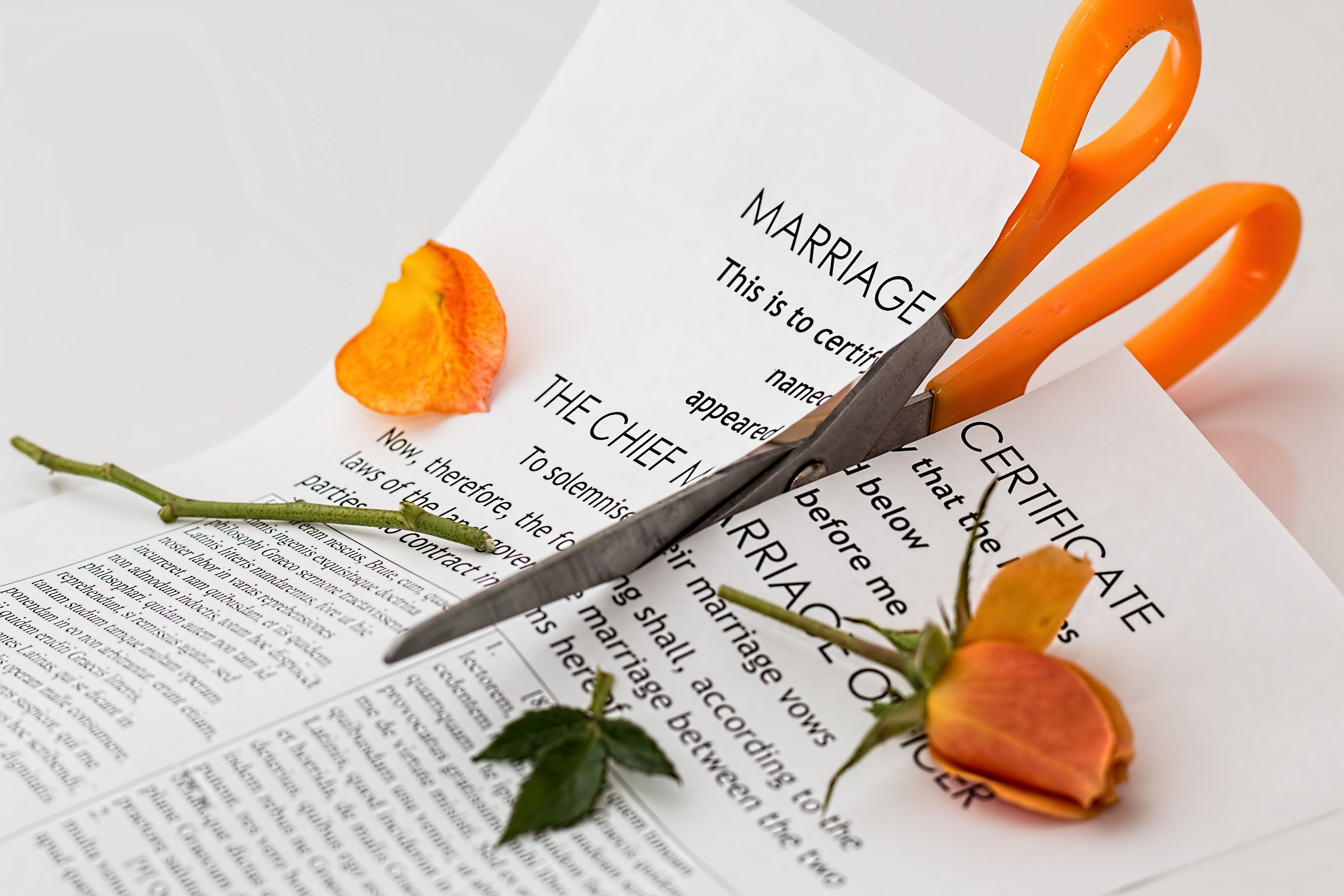 Divorce its not as difficult or expensive as you think divorce its not as difficult or expensive as you think solutioingenieria Choice Image